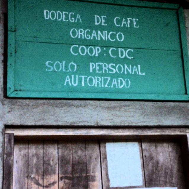 Organic coffee plantations, Ometepe, Nicaragua