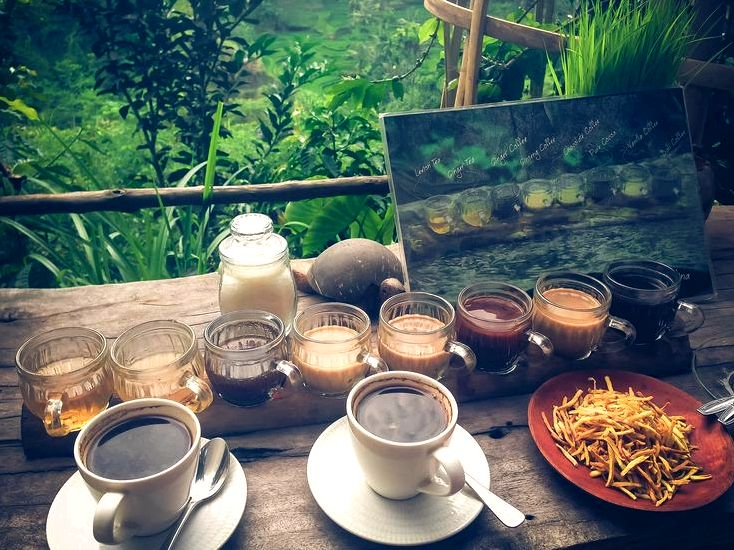 Luwak coffee, a very beautiful indonesian drink - blue karma resort wealthy and         strong aroma          along
