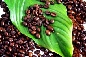 Purchase only USDA certified organic coffee