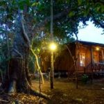 Pyin oo lwin coffee plantation tour