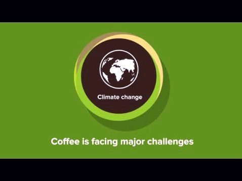 Sustainable coffee challenge- conservation worldwide within the